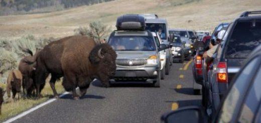 欲在旅游旺季上调17处国家公园门票
