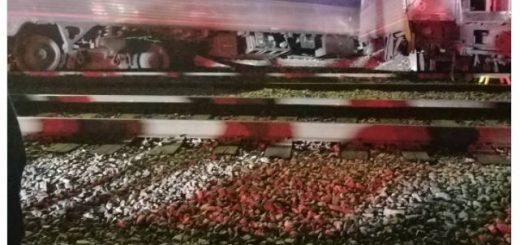 突发!美国两火车相撞,已造成118人死伤!5000加仑燃料泄漏