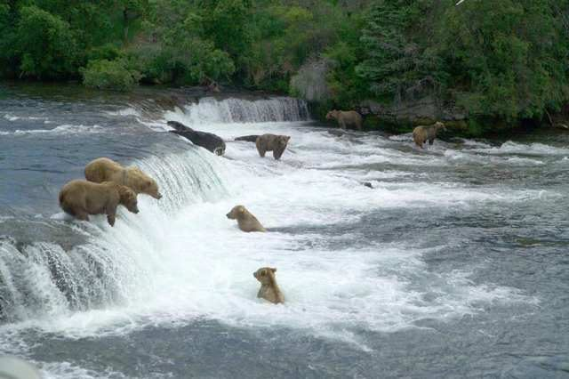 4月国家公园免费日要来啦!关于国家公园竟然还有这么多不知道的事…