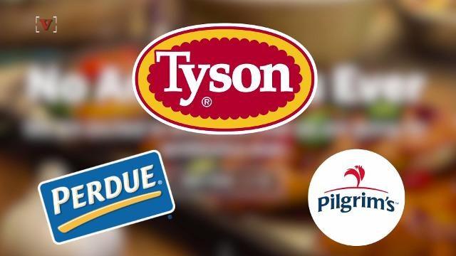 有机鸡肉市场增长可观,泰森也收购了一家公司