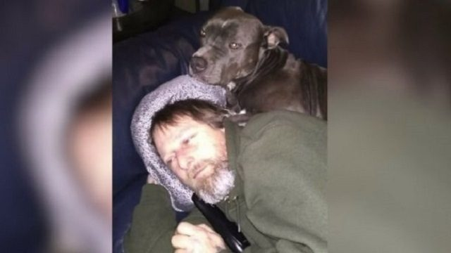 美国男子被狗舔之后 导致严重感染截去四肢