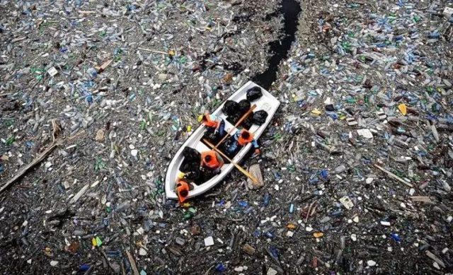 这位大明星去海岛度假却捡了20袋垃圾,但糟心的是,捡了可能也是徒劳…