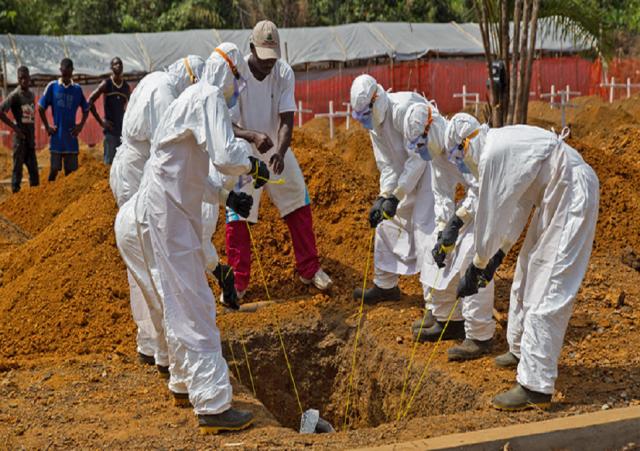 4例样本被确认为阳性埃博拉病毒 这次的病毒会在全球扩散吗?