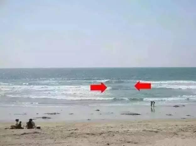 在海边玩耍时,看到这个东西,不要犹豫立马上岸!