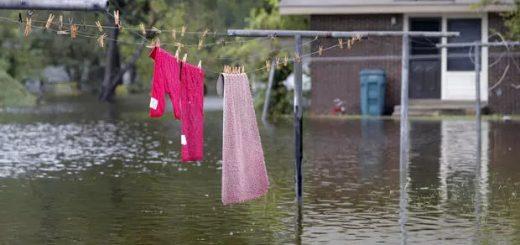 """超强飓风来袭,美国网站上不少""""救助者""""色心大起……"""