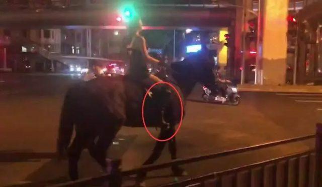上海市中心一衣着性感女子深夜骑马,摆拍???炒作??? 今天