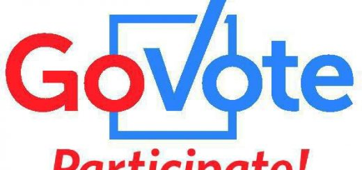 Image result for go vote
