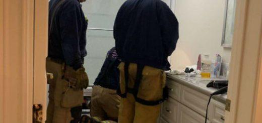 新移民救猫心切拨打911 消警服务竟然免费