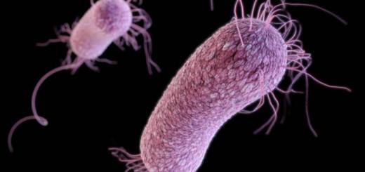 华州居民前往墨西哥手术时感染可致命病菌