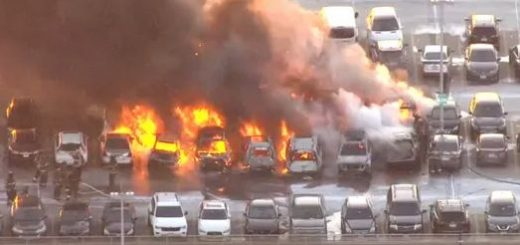 突发! 连烧17辆汽车 火海爆炸!纽瓦克机场停车场重大事故 现场浓烟滚滚 起因是...