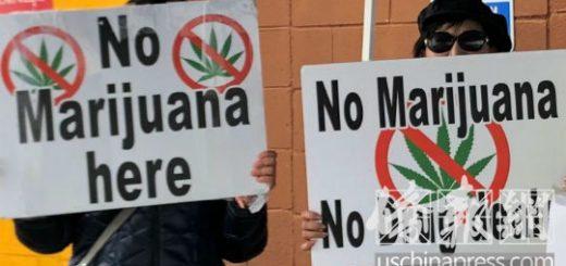 大麻合法化后 华人房东烦恼多