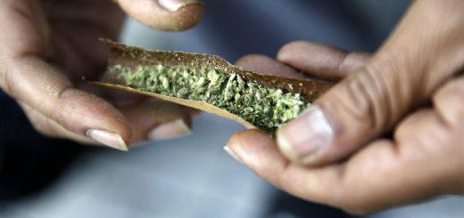 调查显示,四分之一的大麻使用者在上班时吸食【侨报记者雪丹3月13日西雅图报道】根据对华盛顿州、俄勒冈州和科罗拉多州的大麻消费者的一项最新调查显示,四分之一的大麻使用者承认在过去一年内曾经在上班时吸食大麻,而且很可能在投入工作之前已经因吸大麻而兴奋。  一名男子将大麻卷成烟卷。图片来源:美联社  一名男子将大麻卷成烟卷。图片来源:美联社  这项调查由民意调查机构DHM Research进行,在西雅图和波特兰设有办事处的营销传播公司奎因·托马斯(QuinnThomas)为其提供调查资金。调查人员在今年1月8日至14日期间,选取了900名大麻消费者作为代表性样本,对他们进行了访谈,华盛顿州、俄勒冈州和科罗拉多州各有300名消费者入选。调查的误差幅度为正负3.3%。  奎因·托马斯的副总裁扎克·诺灵(Zach Knowling)表示,目前已有很多关于大麻产业及其监管机构的信息,但对其消费者的了解并不多,这项调查研究可以更好地了解这些独特的受众。  2012年,华盛顿州和科罗拉多州通过了选民使大麻娱乐性使用合法化的倡议,成为美国大麻合法化的先驱。俄勒冈州在2014年跟进。调查显示,合法化后,许多大麻消费者增加了他们的使用量。在华州,44%的受访者表示他们现在已经成为日常消费者(每天或每周吸食几次),而在俄勒冈州,这一比例为52%。  随着大麻合法化,这种烟草似乎已进入主流。事实上,调查数据显示,休闲大麻的消费者与普通人并无二致,他们的收入水平和教育程度与美国家庭的平均值非常接近。在接受调查的三个州当中,大麻使用者在种族和民族,年龄,政党关系和其他人口统计因素方面与一般人口分布相匹配。不过有一个重要的例外:性别。调查显示,大麻消费者中男性占比约为60%。  尽管大麻在上述三个州是合法的并且广受欢迎,但绝大多数大麻消费者,占比约79%,仍然认为会有一些挥之不去的耻辱感。只有大约一半的人表示,家人和朋友对他们吸食大麻无感。即使觉得社会上存在着对大麻使用者的鄙视,很多大麻消费者并不隐藏自己的吸食行为, 至少在西雅图是如此,街头巷尾弥漫的大麻味已经成为西雅图城区的特征之一。虽然绝大多数受访者表示家庭是他们消费大麻的主要地方,但超过六分之一的人说他们通常在家以外的地方吸食。  参与调查的受访者表示有必要了解有关大麻使用安全和健康的准确信息,有约一半的人表示他们信任当地的零售商。相比之下,只有38%的人表示他们只信任医疗保健者提供的大麻。卷成香烟是大麻最常被消费的方法,另有约18%的人通常食用大麻食品,其次是使用大麻喷雾和大麻油或面霜。近四分之一的受访者表示他们使用大麻是作为酒的替代品,但选择使用大麻的两个最常见的原因是减轻压力和焦虑,以及减少疼痛。  虽然对于很多上班族来说工作压力很大,但在工作期间吸食大麻并不是一个好主意,而且很容易影响工作效率,这也是为什么很多公司对员工进行药物测试的原因。调查显示,工作时吸大麻至兴奋是一项相当普遍的活动,21%的受访者表示他们在过去一年内接受过大麻药物测试,而相同比例的人表示为了通过测试他们在一段时间内停止使用大麻,不过有9%的受访者没能通过测试。