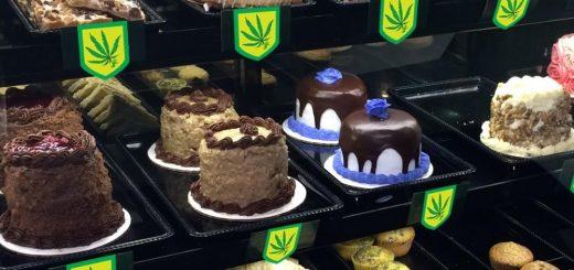 大麻合法化后科州急诊病例翻3倍 食用大麻比想象中更危险!