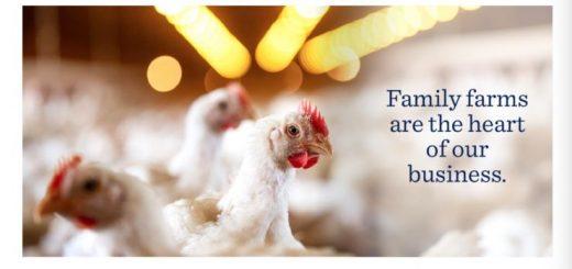 吃鸡条吃出金属片!泰森食品公司召回1200万磅鸡条