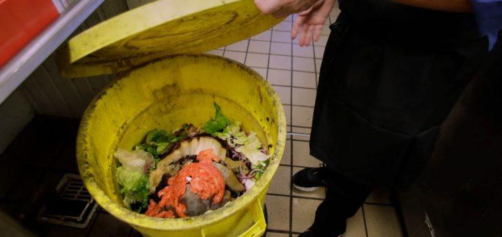 食物残渣不能直接扔 招聘不能问工资历史… 2020有哪些新奇州法?