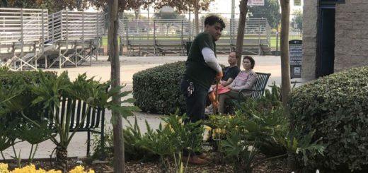 亚裔女性浮尸现阿市艾尔曼瑟公园池塘
