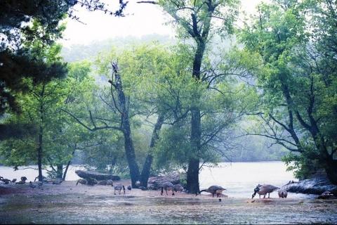 佐治亚州可能会新建国家生态公园