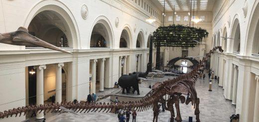 芝加哥水族馆、天文馆、富地博物馆免费啦!不容错过
