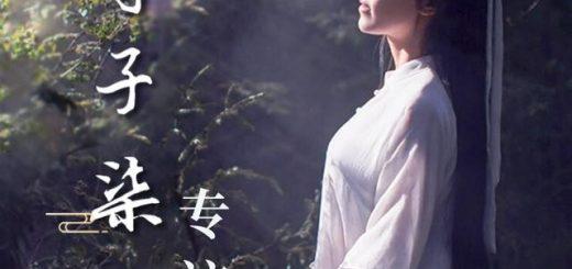 李子柒走红海外:我觉得我做了件挺有意义的事