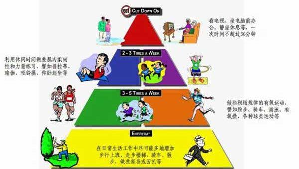 运动有个金字塔 看看你能做到第几层