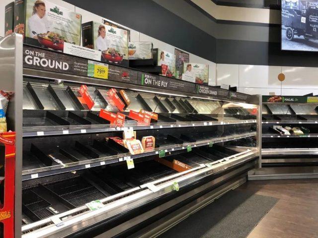 紧急   加美严重肉荒:猪牛鸡均遭波及,价格或飙升