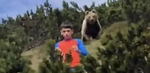 【视频】恐怖!外出的12岁男孩身后惊现一头巨熊!他靠这招捡回一条命!