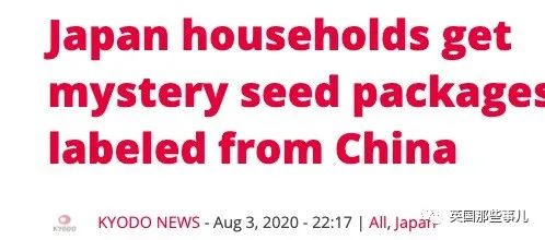 中美联合调查