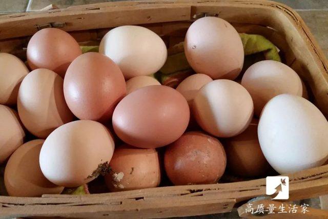 菜农从不外说的15个挑菜技巧,买菜再也不怕被坑了
