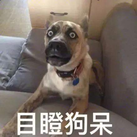 """美国教授说中文""""内个"""",被黑人学生们投诉停课了!段子居然成真了..."""