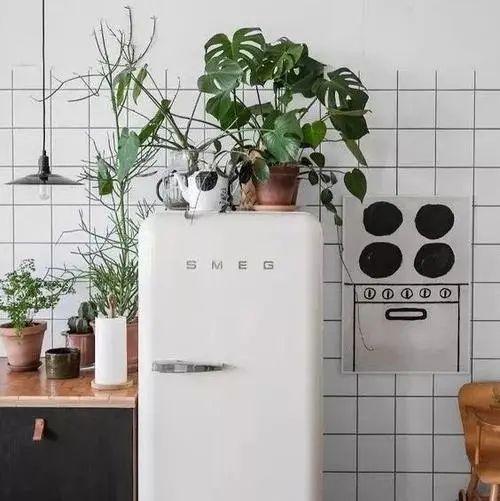 冰箱上别再放这3样东西,费电又减寿命,一定要看!