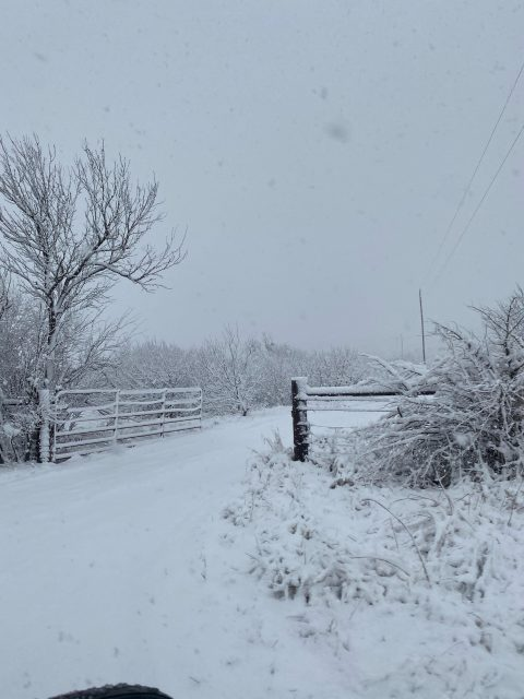 达村下雪啦!达村人冬天在开车出门前 先来学几招儿 保命要紧!