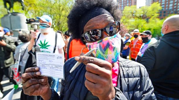 凭疫苗登记证,3000份大麻免费送? 这是认真的吗?