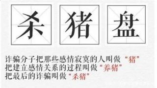 """美国华人遭遇""""杀猪盘"""",网上交友需谨慎"""