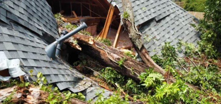 惊险! 大树倒塌劈开屋顶 砸向睡梦中的婴儿! 妈妈狂奔救子 场面吓人!