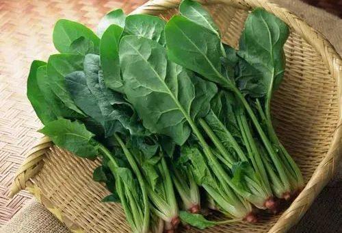 立秋后,这5种绿叶菜一定要多吃!补充维生素,全家换季少生病~